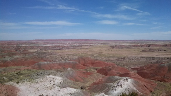 Petrified Forest, i.e. The Painted Desert is Basically Mars